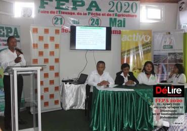 FEPA 2020