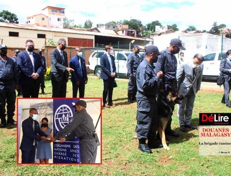 DOUANES MALAGASY - La brigade canine 10